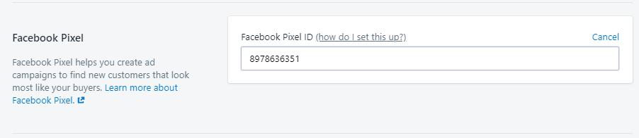 facebook pixel insert shopify settings